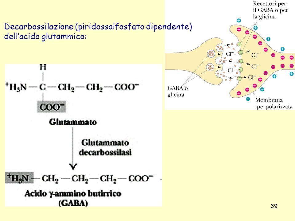 39 Decarbossilazione (piridossalfosfato dipendente) dellacido glutammico: