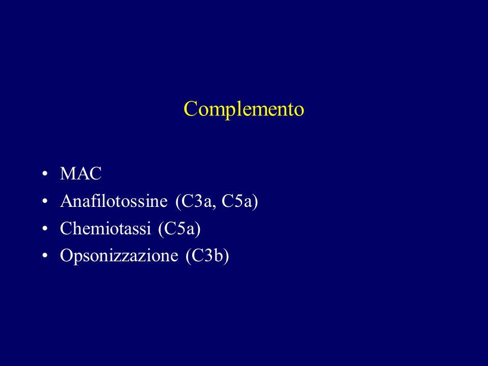 Complemento MAC Anafilotossine (C3a, C5a) Chemiotassi (C5a) Opsonizzazione (C3b)