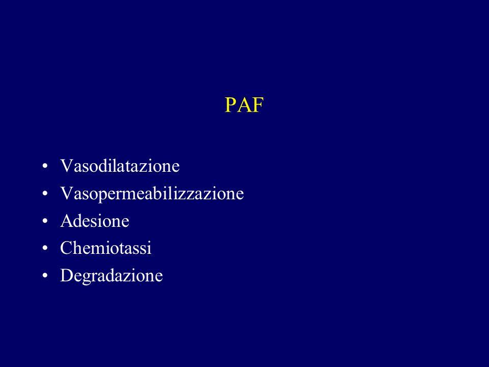 PAF Vasodilatazione Vasopermeabilizzazione Adesione Chemiotassi Degradazione