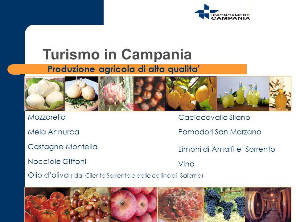 Mozzarella Vino Pomodori San Marzano Nocciole Giffoni Castagne Montella Limoni di Amalfi e Sorrento Olio doliva ( dal Cilento Sorrento e dalle colline