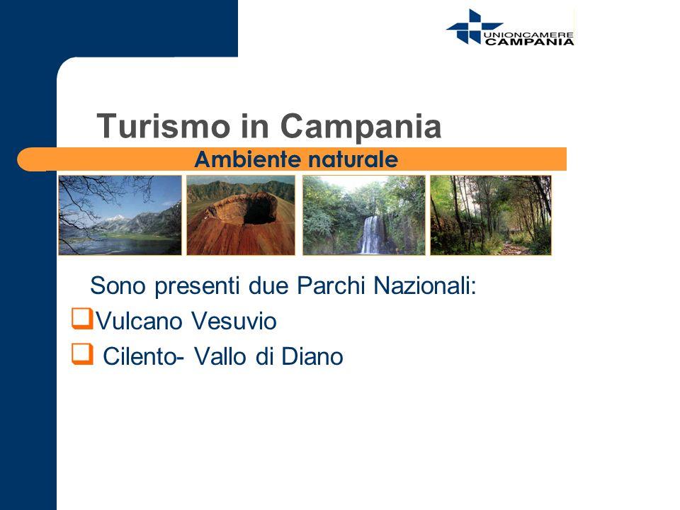 Sono presenti due Parchi Nazionali: Vulcano Vesuvio Cilento- Vallo di Diano Ambiente naturale