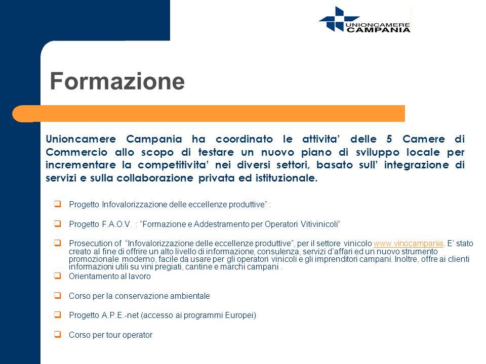 Formazione Progetto Infovalorizzazione delle eccellenze produttive : Progetto F.A.O.V. : Formazione e Addestramento per Operatori Vitivinicoli Prosecu