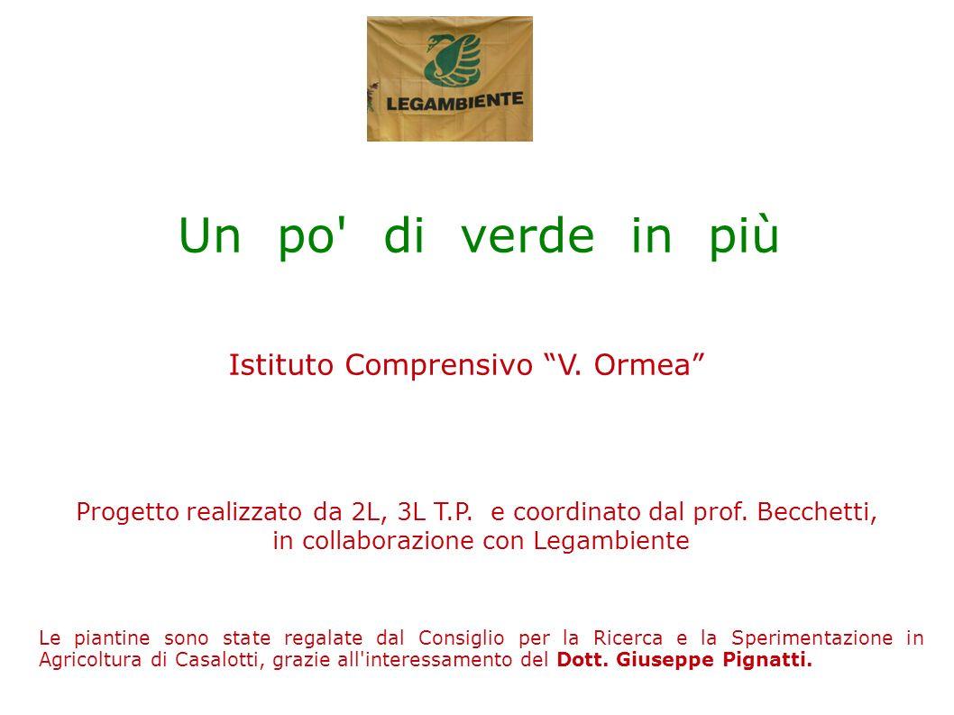 Istituto Comprensivo V. Ormea Progetto realizzato da 2L, 3L T.P. e coordinato dal prof. Becchetti, in collaborazione con Legambiente Un po' di verde i