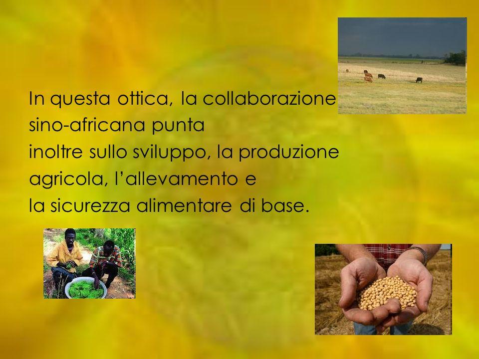 In questa ottica, la collaborazione sino-africana punta inoltre sullo sviluppo, la produzione agricola, lallevamento e la sicurezza alimentare di base