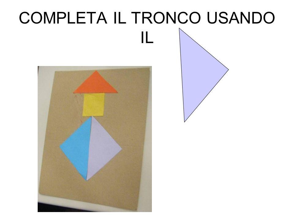 COMPLETA IL TRONCO USANDO IL