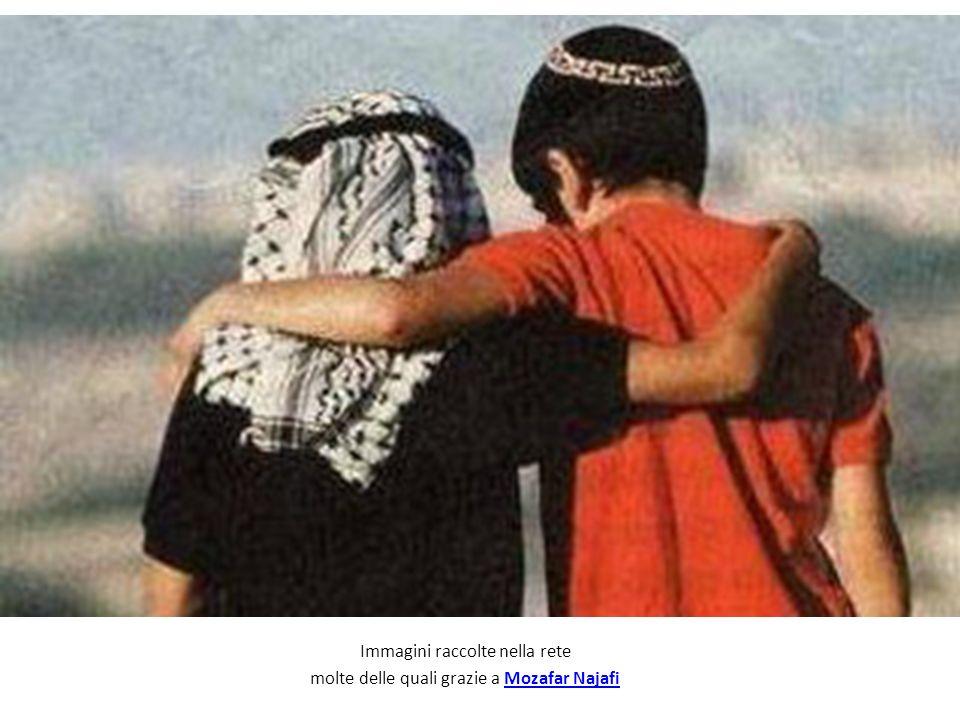Immagini raccolte nella rete molte delle quali grazie a Mozafar NajafiMozafar Najafi