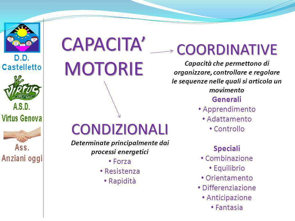 COORDINATIVE Capacità che permettono di organizzare, controllare e regolare le sequenze nelle quali si articola un movimento Generali Apprendimento Ad