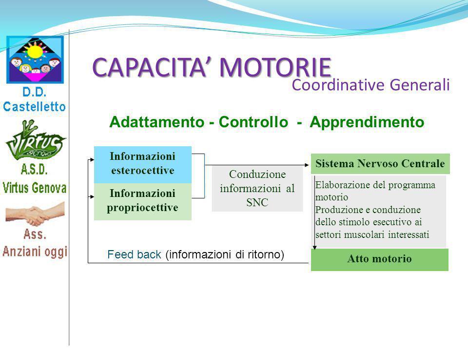 CAPACITA MOTORIE Coordinative Generali Elaborazione del programma motorio Produzione e conduzione dello stimolo esecutivo ai settori muscolari interes
