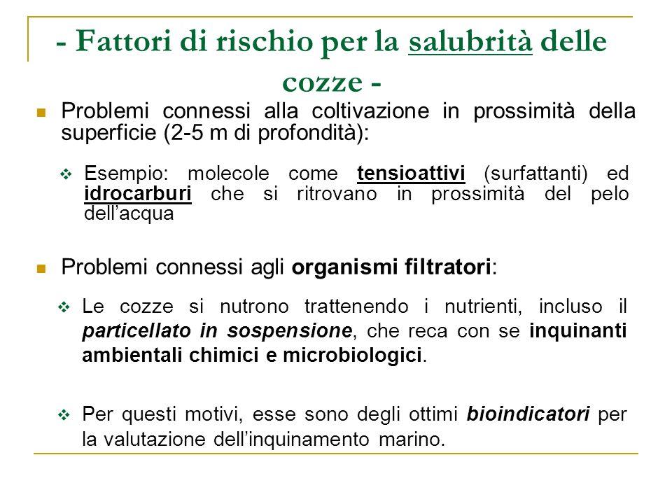 - Fattori di rischio per la salubrità delle cozze - Problemi connessi alla coltivazione in prossimità della superficie (2-5 m di profondità): Problemi