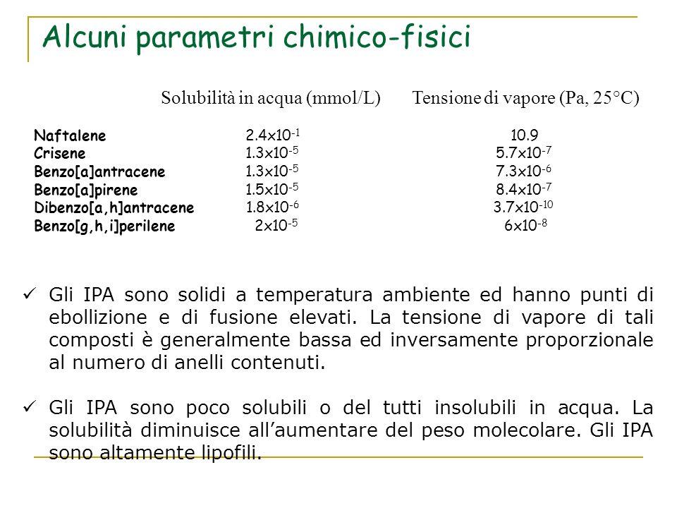 Alcuni parametri chimico-fisici Solubilità in acqua (mmol/L) Tensione di vapore (Pa, 25°C) Naftalene 2.4x10 -1 10.9 Crisene 1.3x10 -5 5.7x10 -7 Benzo[