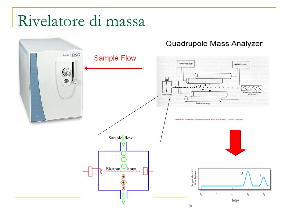 Rivelatore di massa Sample Flow