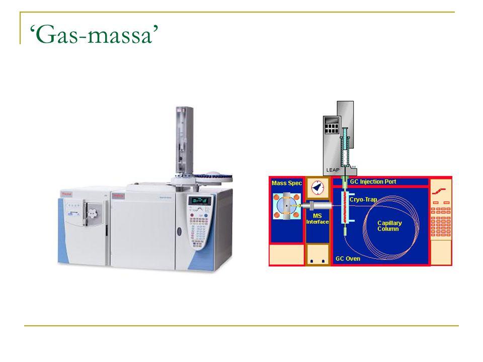 Gas-massa