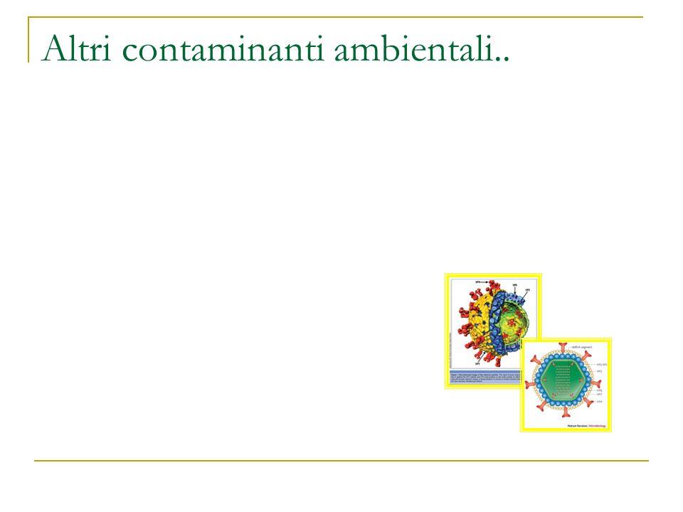 Altri contaminanti ambientali..