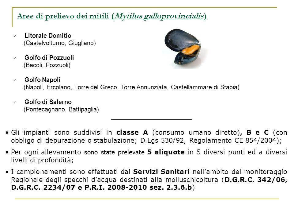 Litorale Domitio (Castelvolturno, Giugliano) Golfo di Pozzuoli (Bacoli, Pozzuoli) Golfo Napoli (Napoli, Ercolano, Torre del Greco, Torre Annunziata, C