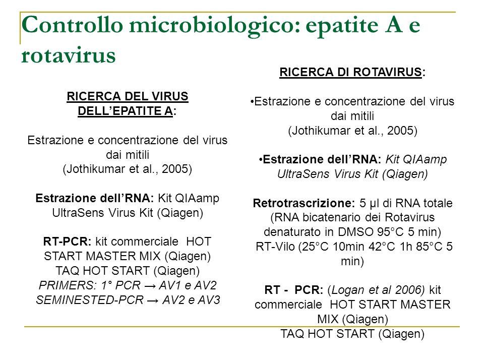 RICERCA DI ROTAVIRUS: Estrazione e concentrazione del virus dai mitili (Jothikumar et al., 2005) Estrazione dellRNA: Kit QIAamp UltraSens Virus Kit (Q