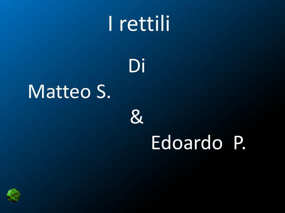 I rettili Di Matteo S. & Edoardo P.