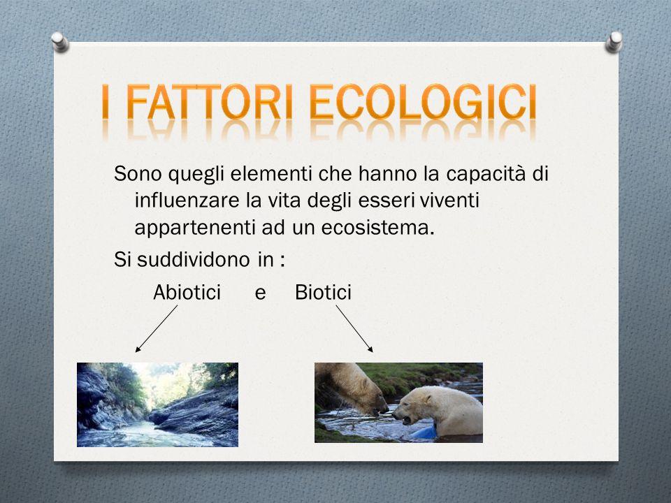 Sono quegli elementi che hanno la capacità di influenzare la vita degli esseri viventi appartenenti ad un ecosistema. Si suddividono in : Abiotici e B