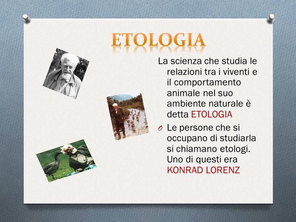 La scienza che studia le relazioni tra i viventi e il comportamento animale nel suo ambiente naturale è detta ETOLOGIA O Le persone che si occupano di