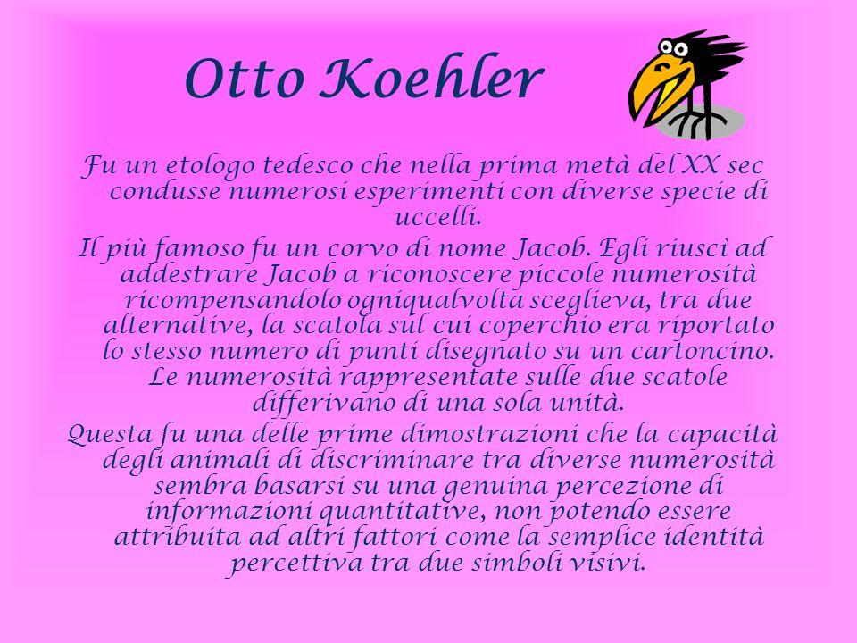 Otto Koehler Fu un etologo tedesco che nella prima metà del XX sec condusse numerosi esperimenti con diverse specie di uccelli. Il più famoso fu un co