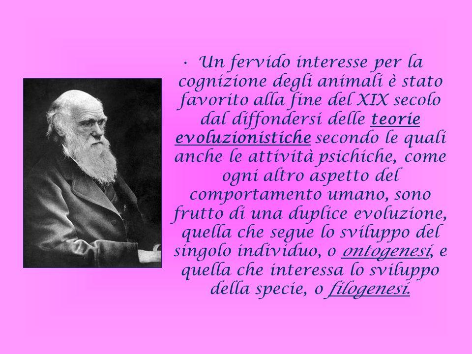Un fervido interesse per la cognizione degli animali è stato favorito alla fine del XIX secolo dal diffondersi delle teorie evoluzionistiche secondo l