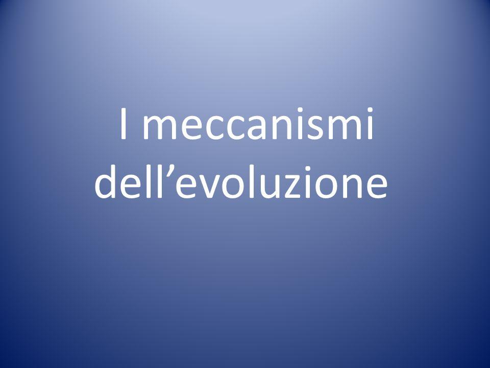 I meccanismi dellevoluzione