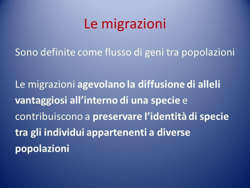 Le migrazioni Sono definite come flusso di geni tra popolazioni Le migrazioni agevolano la diffusione di alleli vantaggiosi allinterno di una specie e