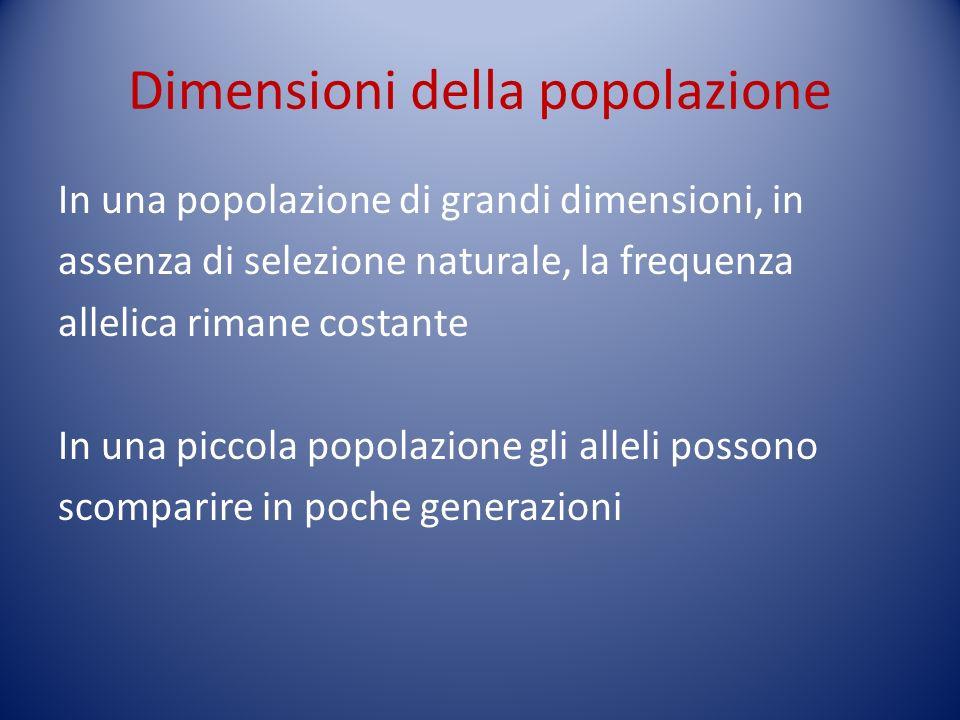 Dimensioni della popolazione In una popolazione di grandi dimensioni, in assenza di selezione naturale, la frequenza allelica rimane costante In una p