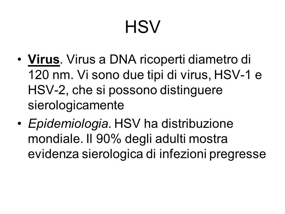HSV Virus. Virus a DNA ricoperti diametro di 120 nm. Vi sono due tipi di virus, HSV-1 e HSV-2, che si possono distinguere sierologicamente Epidemiolog