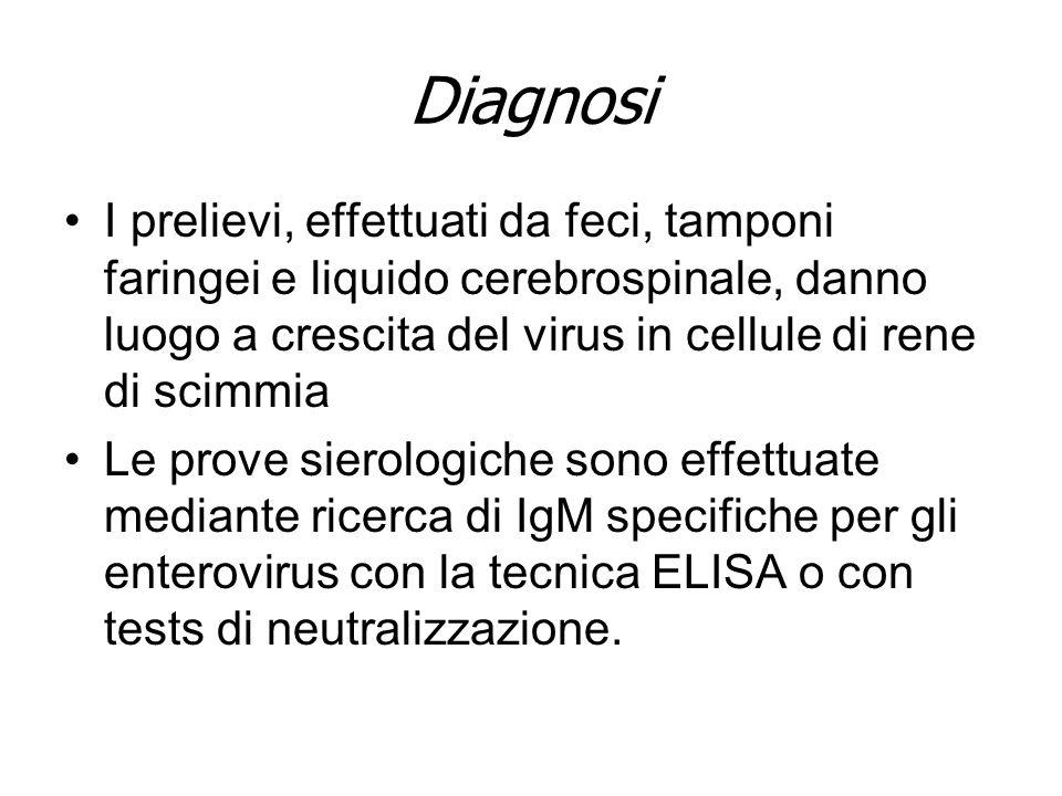 Diagnosi Questa viene effettuata mediante –isolamento del virus in colture di tessuti (cellule di rene di scimmia); –ricerca dellantigene: immunofluorescenza dell aspirato nasofaringeo; –sierologia: test di fissazione del complemento; test di inibizione dell emoagglutinazione