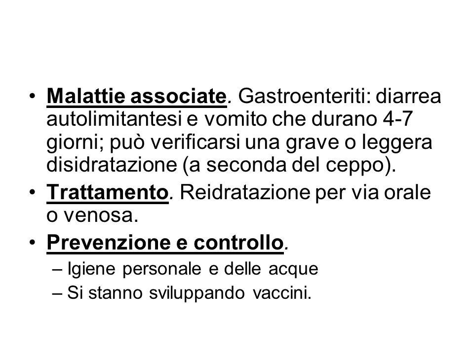 Malattie associate. Gastroenteriti: diarrea autolimitantesi e vomito che durano 4-7 giorni; può verificarsi una grave o leggera disidratazione (a seco