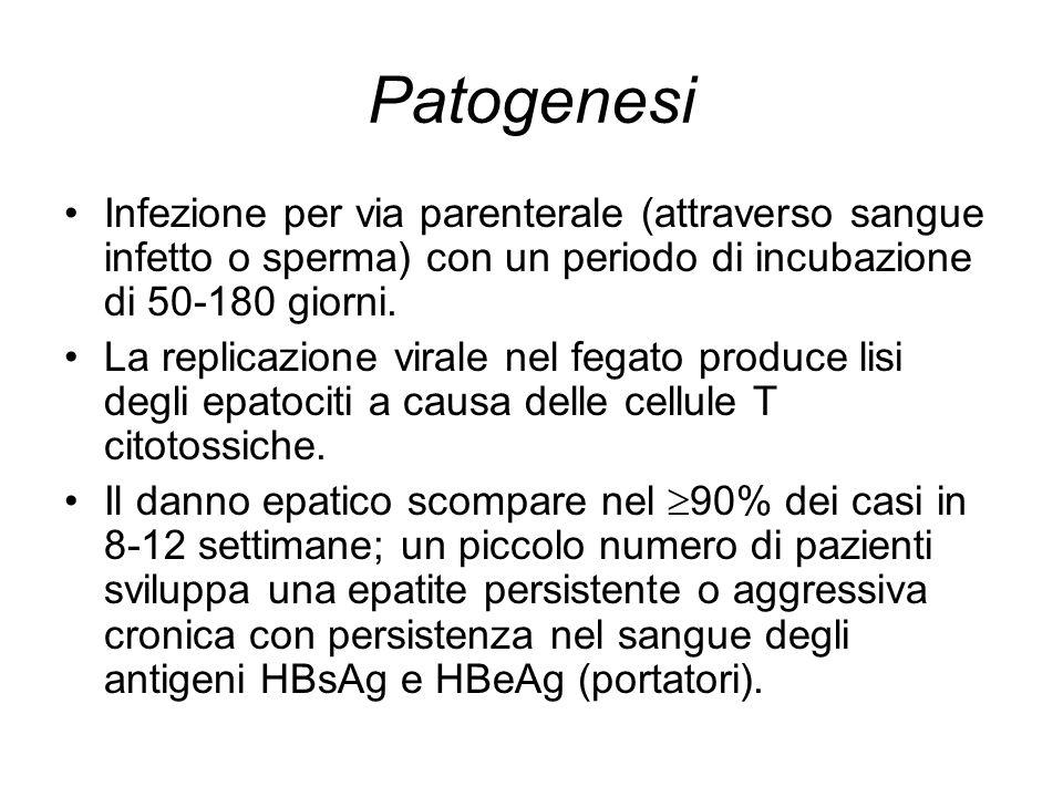 Patogenesi Infezione per via parenterale (attraverso sangue infetto o sperma) con un periodo di incubazione di 50-180 giorni. La replicazione virale n