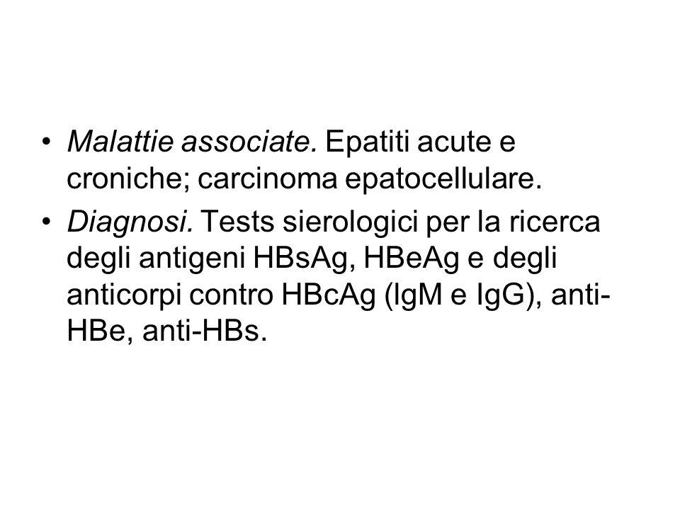 Malattie associate. Epatiti acute e croniche; carcinoma epatocellulare. Diagnosi. Tests sierologici per la ricerca degli antigeni HBsAg, HBeAg e degli