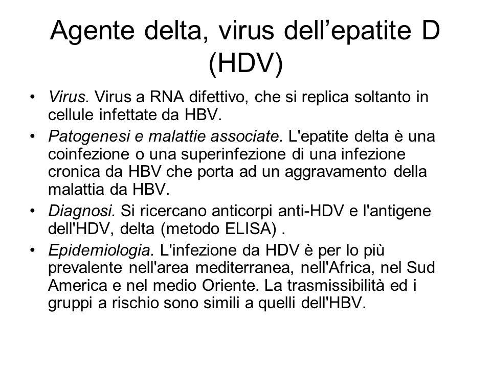 Agente delta, virus dellepatite D (HDV) Virus. Virus a RNA difettivo, che si replica soltanto in cellule infettate da HBV. Patogenesi e malattie assoc