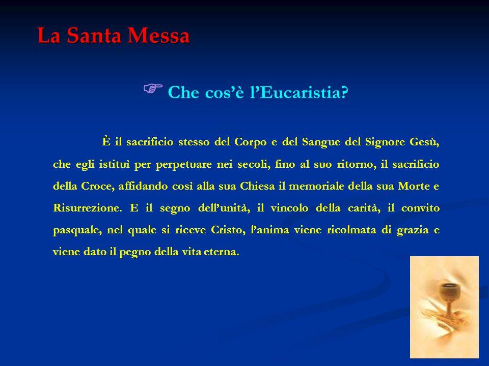 La Santa Messa Quando Gesù Cristo ha istituito lEucaristia.