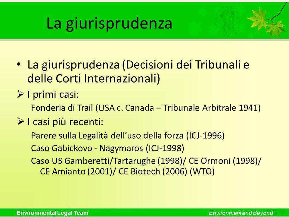 Environmental Legal TeamEnvironment and Beyond Trattati e Convenzioni Internazionali (I) Primo tipo di trattati e convenzioni internazionali: Trattati aventi ad oggetto inquinamenti transfrontalieri La Convenzione sullinquinamento atmosferico transfrontaliero a grande distanza (UNECE-1979) Le Convenzioni sui corsi dacqua (UNECE-1992 and UN- 1997) La Convenzione di Basilea sui movimenti transfrontalieri di rifiuti (UNEP-1979)