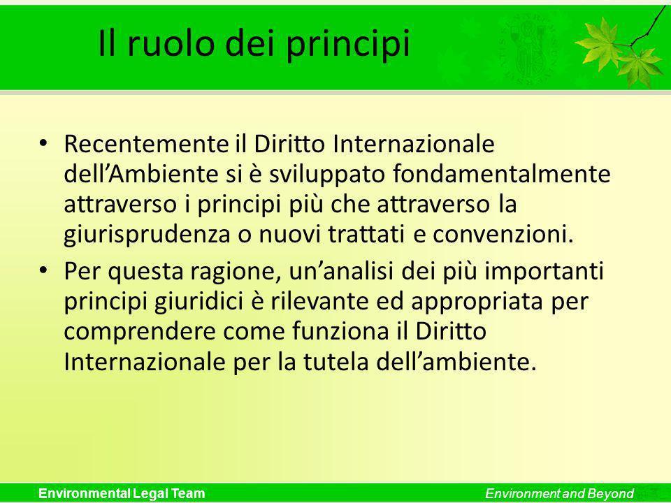 Environmental Legal TeamEnvironment and Beyond Università degli Studi di Siena Corso di Perfezionamento per Esperti in Legislazione Ambientale Siena, 17 marzo 2009 I Principi Internazionali e Comunitari nel Diritto Ambientale Prof.