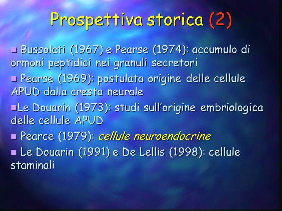 Prospettiva storica (2) Bussolati (1967) e Pearse (1974): accumulo di ormoni peptidici nei granuli secretori Bussolati (1967) e Pearse (1974): accumul