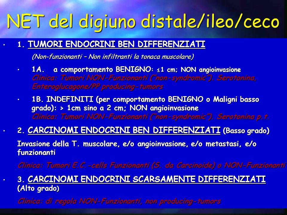 NET del digiuno distale/ileo/ceco 1. TUMORI ENDOCRINI BEN DIFFERENZIATI 1. TUMORI ENDOCRINI BEN DIFFERENZIATI (Non-funzionanti – Non infiltranti la to