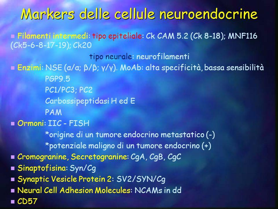 Il sistema delle cellule neuroendocrine Cell typeLocalisationProductsFactors that regulate secretion DGastrointestinal tractSomatostatinHormones, neural factors, and acid EnterochromaffinGastrointestinal tractSerotonin, substance P, guanilin, and melatonin Luminal factors, hormones, and neural factors Enterochromaffin-likeStomachHistamineHormones, gastrin, and neural factors GStomach and duodenumGastrinAmino acids, neural factors, and acid GrGastrointestinal tractGhrelinLuminal factors and hormones IDuodenumCholecystokinin, gastrin, etcLipids and neural factors KDuodenum and jejunumGastric inhibitory polypeptide Nutrients and hormones LSmall intestineGlucagone-like peptide YY, and neuropeptide Y Glucose and hormones MotilinDuodenumMotilinNeural factors and luminal factors NSmall intestineNeurotensinLipids SDuodenumSecretinAcid VIPGastrointestinal tractVasoactive Intestinal PeptideNeural XStomachAnylinNot defined