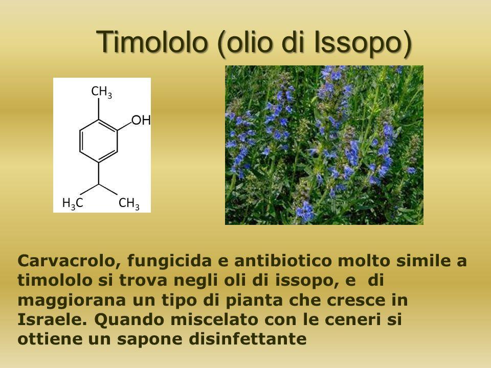 Timololo (olio di Issopo) Carvacrolo, fungicida e antibiotico molto simile a timololo si trova negli oli di issopo, e di maggiorana un tipo di pianta