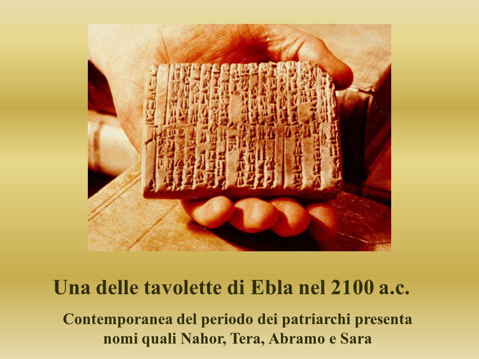 Una delle tavolette di Ebla nel 2100 a.c. Contemporanea del periodo dei patriarchi presenta nomi quali Nahor, Tera, Abramo e Sara