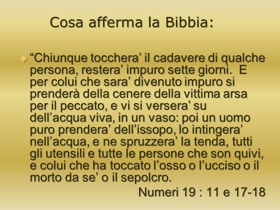 LA BIBBIA E PIENA DI CONTRADDIZIONI .