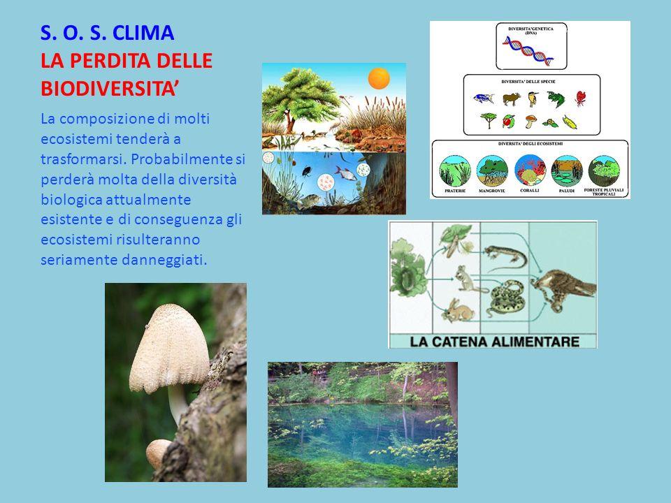 S. O. S. CLIMA LA PERDITA DELLE BIODIVERSITA La composizione di molti ecosistemi tenderà a trasformarsi. Probabilmente si perderà molta della diversit