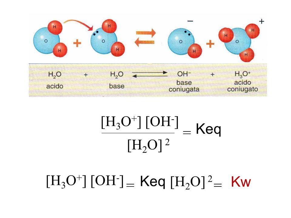 [H 3 O + ] [OH - ] [H 2 O] 2 = Keq [H 3 O + ] [OH - ] = Keq [H 2 O] 2 = Kw