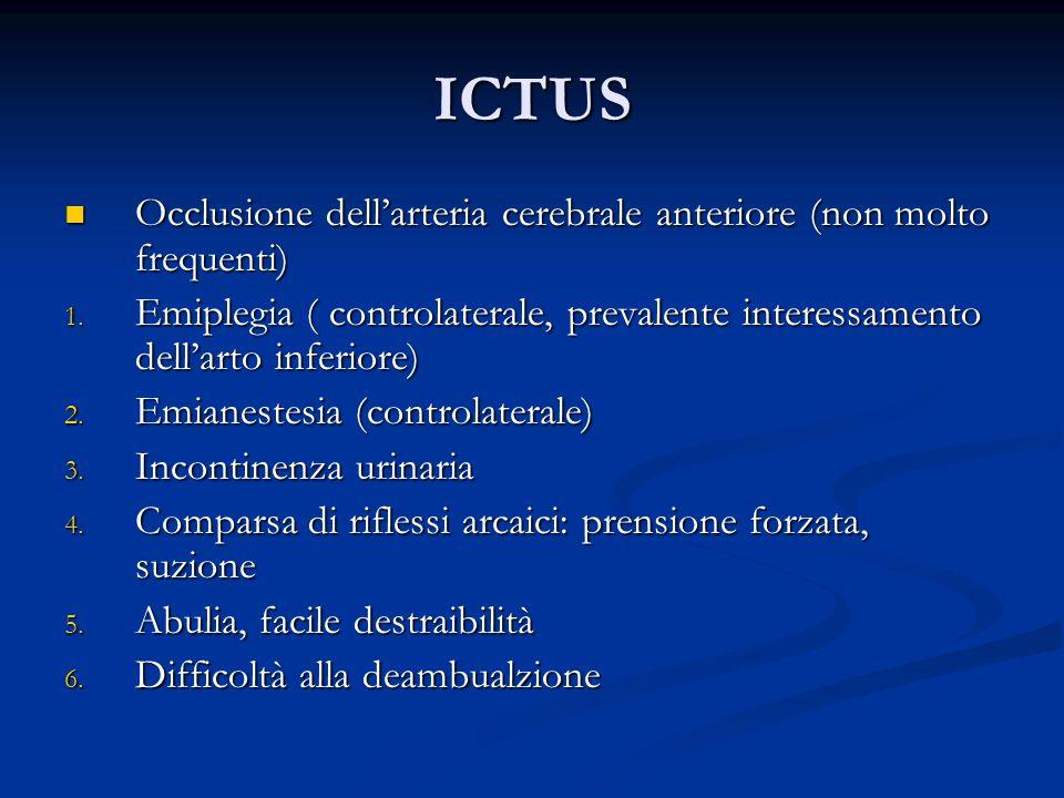 ICTUS Occlusione dellarteria cerebrale anteriore (non molto frequenti) Occlusione dellarteria cerebrale anteriore (non molto frequenti) 1. Emiplegia (