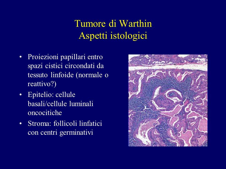 Tumore di Warthin Aspetti istologici Proiezioni papillari entro spazi cistici circondati da tessuto linfoide (normale o reattivo?) Epitelio: cellule b
