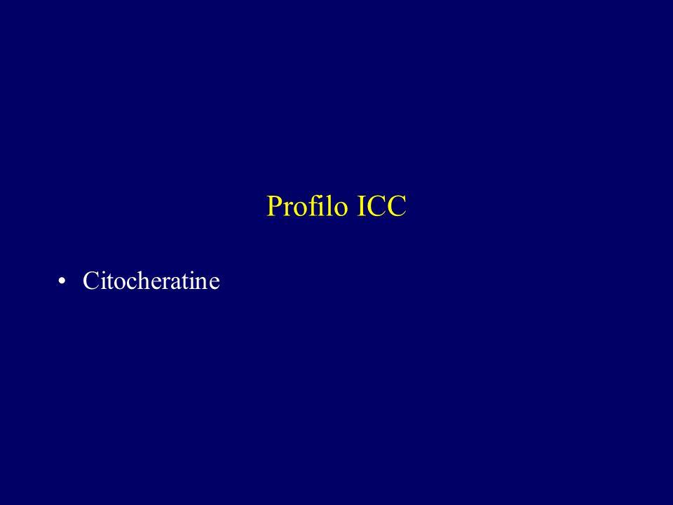 Profilo ICC Citocheratine