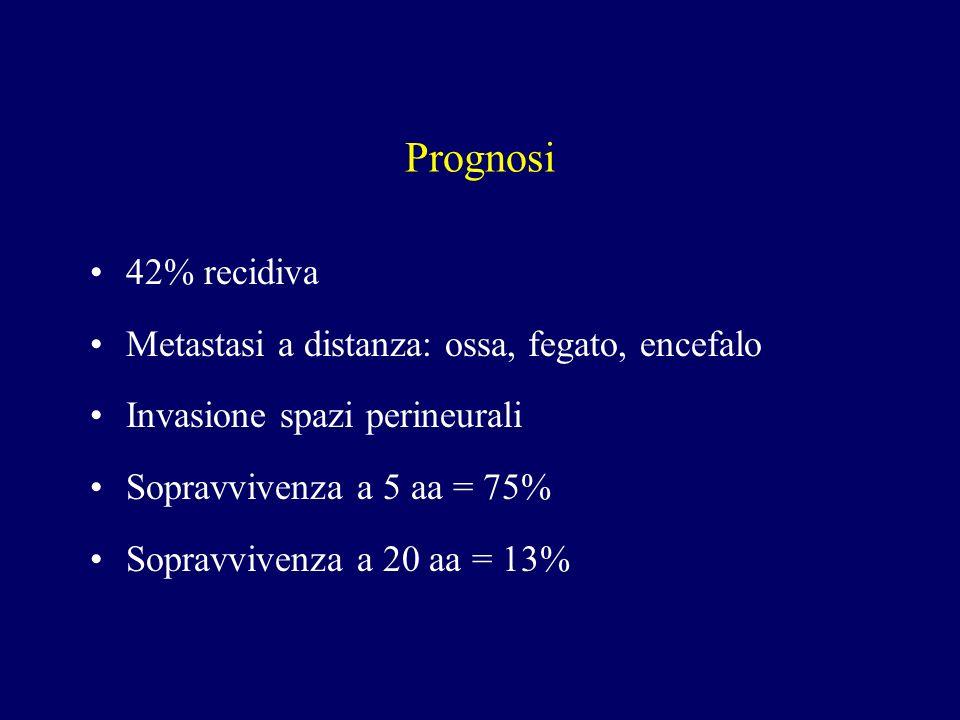 Prognosi 42% recidiva Metastasi a distanza: ossa, fegato, encefalo Invasione spazi perineurali Sopravvivenza a 5 aa = 75% Sopravvivenza a 20 aa = 13%