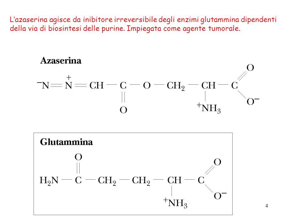 4 Lazaserina agisce da inibitore irreversibile degli enzimi glutammina dipendenti della via di biosintesi delle purine. Impiegata come agente tumorale
