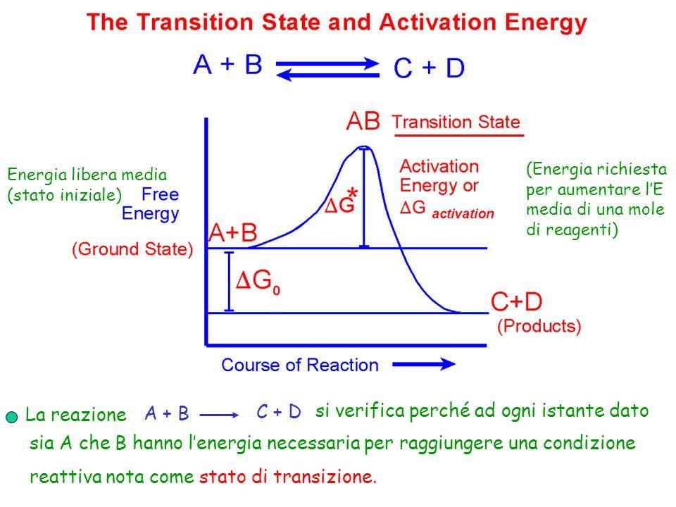 La reazione A + B C + D si verifica perché ad ogni istante dato sia A che B hanno lenergia necessaria per raggiungere una condizione reattiva nota com